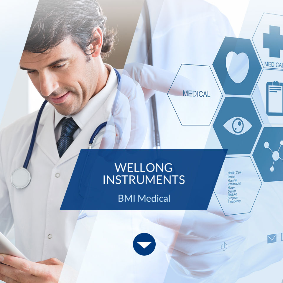 Wellong Instruments